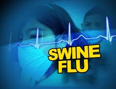 Swine flu scare in India