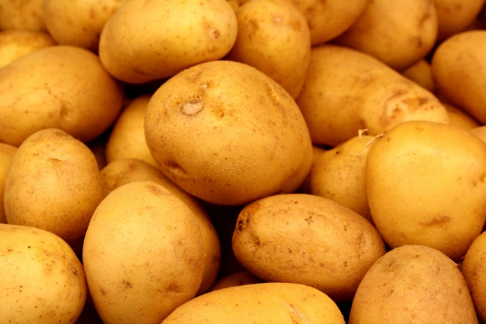Potatoes were banned in France between 1748 and 1772