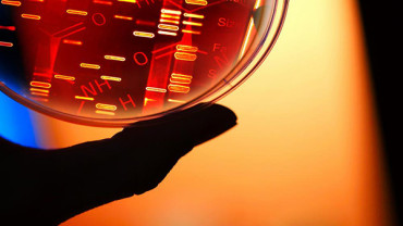 New method can save data in living cells