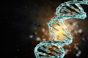 Scientists plan to build human genome