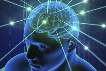 Immune cells in covering of brain discovered