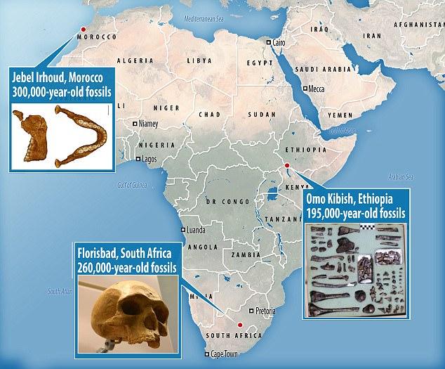 Locator Africa Map.jpg