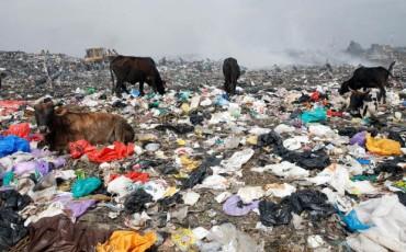 Kenya imposes world's toughest law against plastic bags