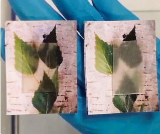 Transparent wood' that can store, release heat made